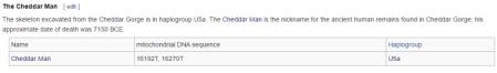 cheddar-wiki